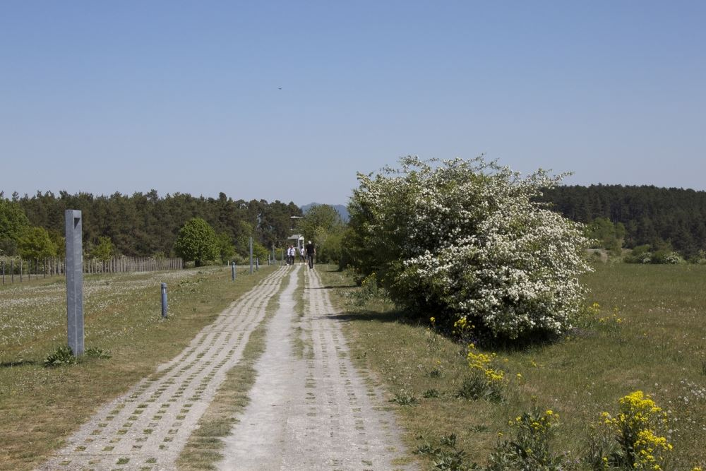 ma11PointAlphaGrenzweg_n